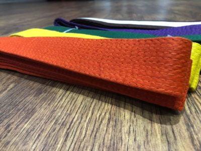 8th Kyu Orange Belt - My Online Karate